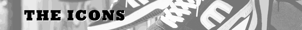 Etnies Icons Banner