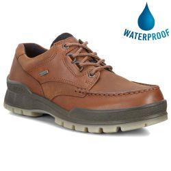 Ecco Shoes Mens Track 25 GTX Waterproof Walking Shoes - Bison Brown