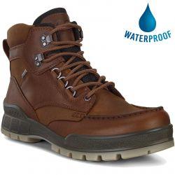 Ecco Shoes Track 25 GTX Waterproof Walking Boot - Bison Bison