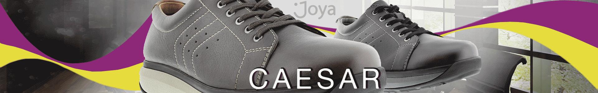 Joya Caesar