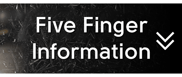 Five Finger Info